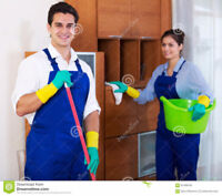 Cleaning service with professional results