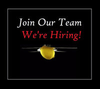 Server Wanted - Full availability Start Right Away!