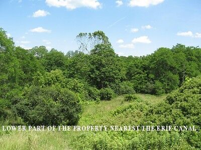 10 Acres  Wooded Land  Up State Ny Land  All Utilities Are Available