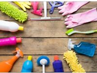 Deep clean / spring clean / one off clean SPECIAL OFFER**Experienced Cleaner**
