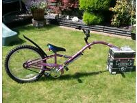 Girls tagged bike.