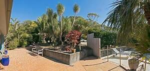 skinners shoot     artist retreat 3 km byron bay absolute privacy Byron Bay Byron Area Preview