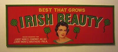 Wholesale Lot of 25 Old Vintage 1930's - IRISH BEAUTY - Crate LABELS - Shamrocks