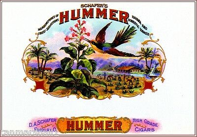 Hummer Hummingbird Bird Smoke Vintage Cigar Box Crate Inner Label Art Print