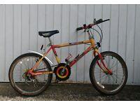 Child Mountain Bike - Raleigh Mustang all terrain, 18 inch wheels, 5 speeds