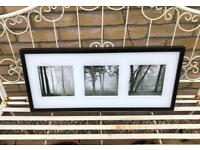 "IKEA Tree pictures in Black Frame 28"" x 12"""