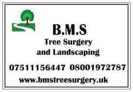 BMS Tree Surgery and Landscaping - Landscapers landscape gardeners tree surgeons Watford Bushey