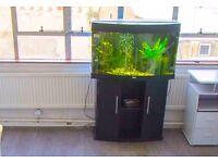 Juwel Vision 180 Aquarium and Cabinet Black (Used Fish tank)