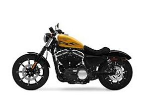 2016 harley-davidson sportster XL883N IRON HARD CANDY GOLD FLAKE