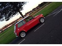 1992 Rover Mini Cooper Lookalike.