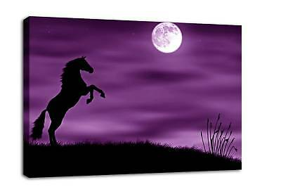 PURPLE CANVAS PICTURE LARGE HORSE WALL ART PRINT mtd A1