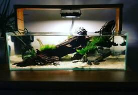 Fish tank/aquarium
