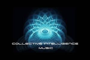 Collective Intelligence Music Flemington Melbourne City Preview