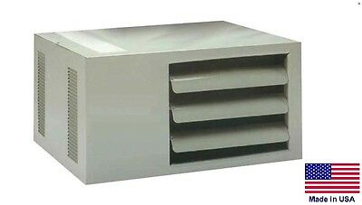 Unit Heater - Separated Combustion - Forced Air - Natural Gas - 60000 Btu