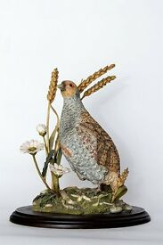Country Artists - Grey Partridge with Wheat and Daisies