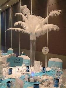 white feather plumes for sale pack of 10 weddings events parties Success Cockburn Area Preview