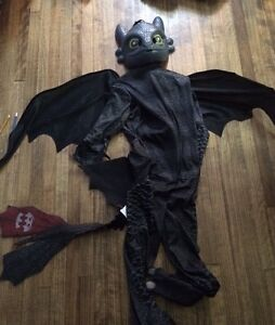 How to Train Your Dragon Toothless costume
