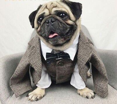 Pug Dog Costume (Handsome Gentry Dog Wedding Costume Pet Fashion Cloth French Bulldog Pug)