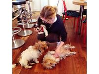 DOGS ARE THE BEST THERAPISTS, THAT'S WHY SOHOST IS DOG FRIENDLY