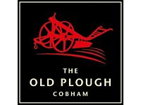 Kitchen Porter - The Old Plough, Stoke d'Abernon, Cobham - £7.50/hr + great tips & discounted dining