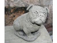 Stone Bull Dog