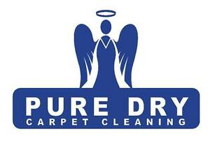 Pure Dry Home Services Surry Hills Inner Sydney Preview
