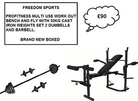 Pro Fitness Multi-use Workout Bench and Fly + 50KG CAST IRON WEIGHTS SET (BNB)