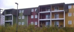 Dineen Place Apartments - 1 Bedroom Apartment for Rent