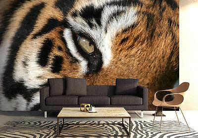 Groß Papier Tapete für Schlafzimmer 254x183cm Wandbild Tiger Wilde Katze - Ösen