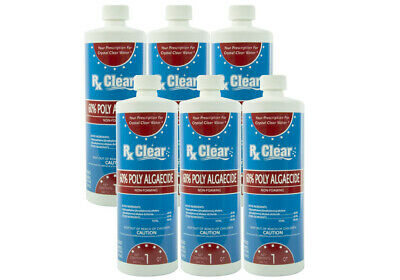 Algae Liquid - (6 Pack) Rx Clear Algaecide 60 Plus Prevents Algae Swimming Pool Chemical - 1 Qt