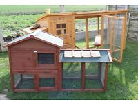 Hutch / coop for chickens, rabbits, baby armadillos etc. 2 chicks if you want!