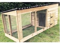 New dog kennel and run