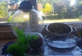 Round fish tank and accessories
