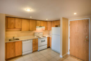 2 Bedroom Dog Friendly Suite in Fantastic South End Location!