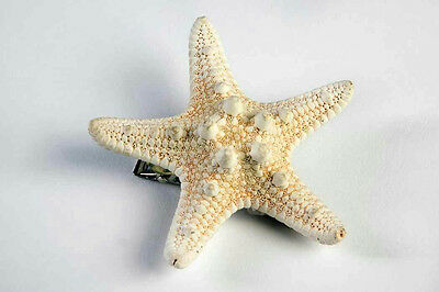 Star Fish Costume (Mermaid Ivory Star Fish Seashell Hair Clip Costume)