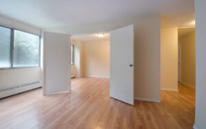 1 Bedroom +Den,  Steps From Point Pleasant Park, Dog Friendly!