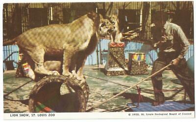 St. Louis Missouri MO ~ St. Louis Zoo Souvenir Postcard 1952 #8 St . Louis Zoo