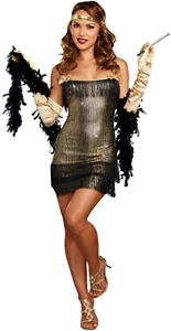 Dreamgirl Shimmy Shake Flapper Costume  Brand New