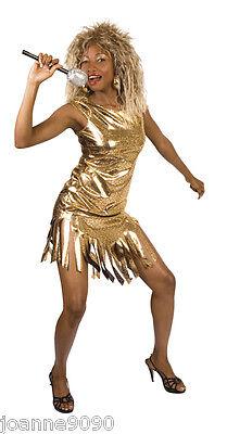 Ladies Womens Gold Tina Turner Rock Pop Star 80s Fancy Dress Costume Outfit 8-12 (Tina Turner Halloween)