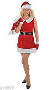 Sexy-Santa-Helper-Mrs-Claus-Dress-Costume-Adult-8-12-Holiday-Christmas-Outfit