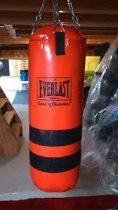 Everlast 60 lb Boxing Punching Bag