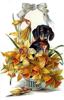 Vintage DACHSHUND DOG in basket of flowers Quilting Fabric Blocks 8x10