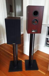 Paradigm Focus Speakers