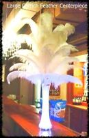 Ostrich Feather Centerpieces for rent