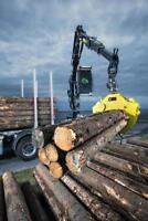 Drivers for Log Truck and Forwarder