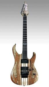 Spear Gladius SP Electric Guitar with Floydrose-II Trem  NEW
