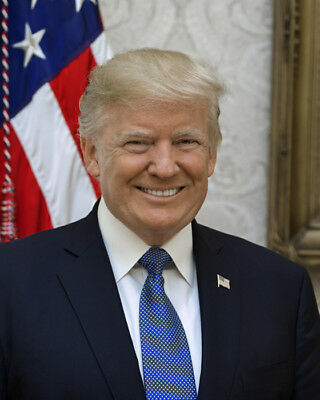 New Official Portrait Of President Donald J Trump  16X20 Photo