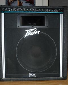 Peavey KB-300 avec Black Widow et Road Case à roulettes