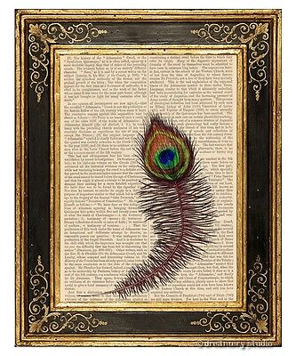 Peacock Feather Art Print on Antique Book Page Decorative Wall Hanging