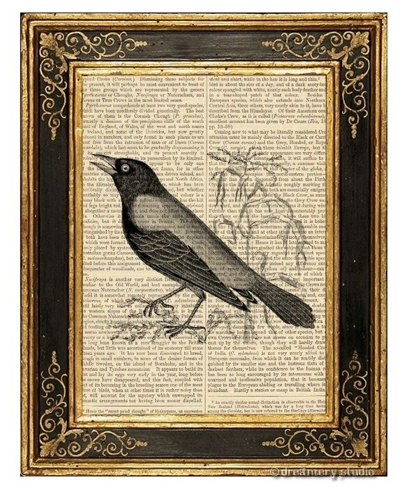 Crow Art Print on Vintage Book Page Black Bird Home Office Hanging Decor Gifts